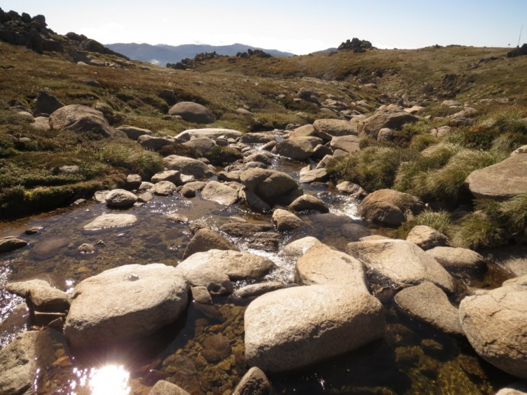 Walking to Mt Kosciuszko